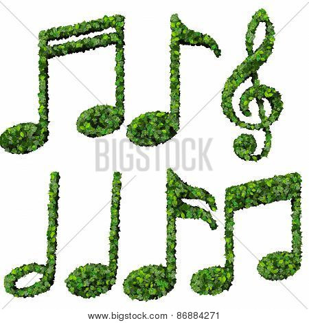 Musical notes, symbol made from green leaves isolated on white background.