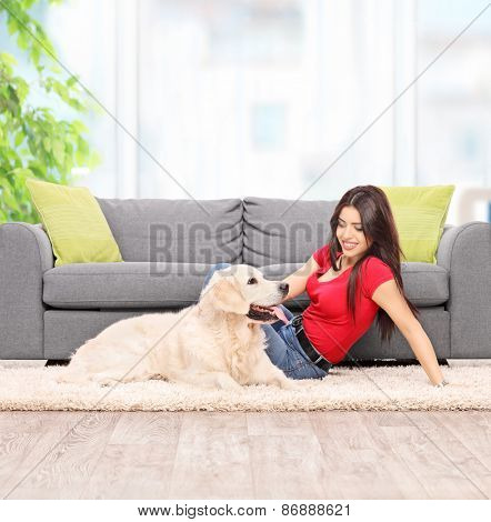 Young woman petting a dog seated on carpet next to a modern gray sofa at home shot with tilt and shift lens