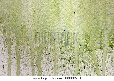 Light Green Watercolor Textures 1