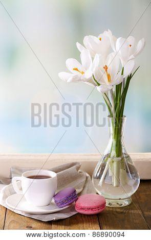 White crocus in vase on windowsill background