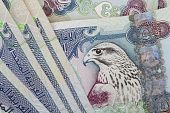 picture of dirhams  - UAE currency  - JPG