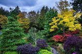 stock photo of masterpiece  - Butchart Gardens  - JPG