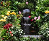image of fountain grass  -  Butchart Garden Park on Vancouver Island - JPG