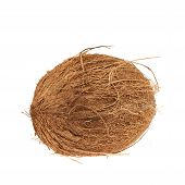 foto of eatables  - Whole coconut fruit isolated over the white background - JPG