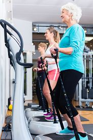 pic of vibration plate  - Group on vibrating plates in gym training for fitness sport - JPG