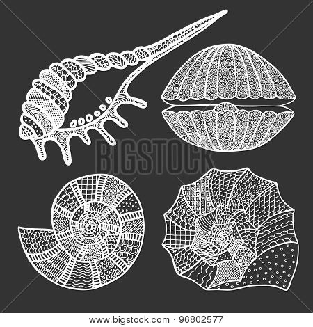 Set Of Seashells And Starfish