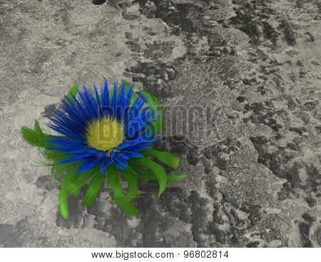 Toughness, Strength, Resilience, Resistance Concept, Flower On Desert