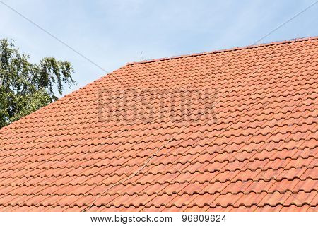 Red Tiles Roof Of Dutch Farmhouse