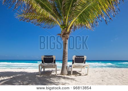Two Beach Beds Under Palm Tree On  Beachfront