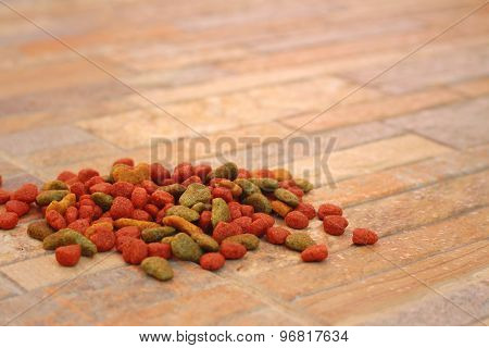Cat Food On The Floor At The Park.