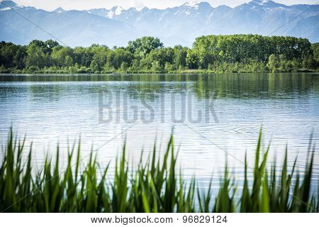 Peaceful scene of a lake surrounded by trees