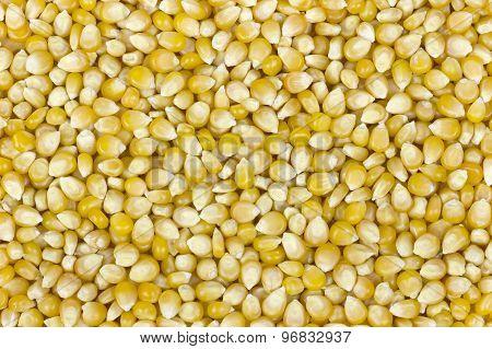 Raw corn background