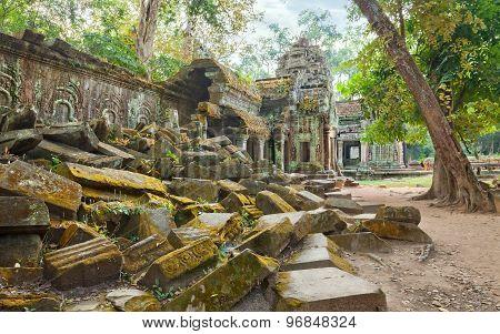 Ta Prohm Temple ancient ruins, Angkor
