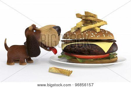 Dog With Big Mac