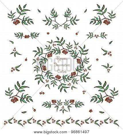 Vector Set Of Cute Rowan Twigs Decorative Elements
