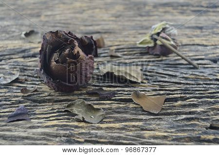 Dried Rose On Old Wooden Board, Broken Heart Concept