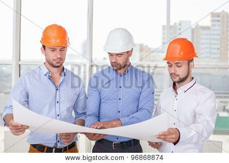 Attractive young erectors are working on a new project