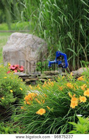 Pretty rock garden