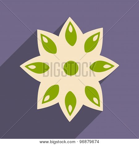 Flat with shadow icon and mobile application anise