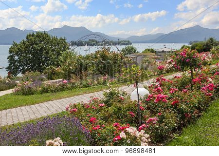 Beautiful Promenade With Lavender And Roses, Lake Chiemsee, Bavaria