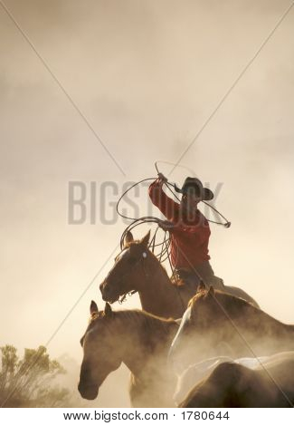 Roping And Riding