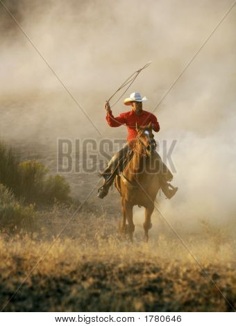 Cowboy In Motion