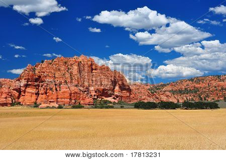 Wheat Fields At Zion Np