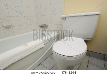 Clean White Toilet And Bathtub