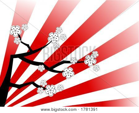 White Cherry Blossoms On Red Stripes