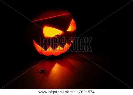 Halloween Jack O Lantern or Pumpkin internally lit casting shadows with two spiders