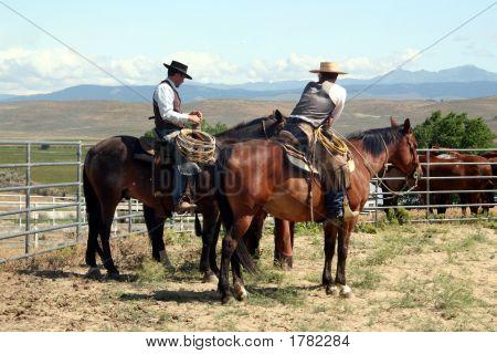 Cowboy Branding