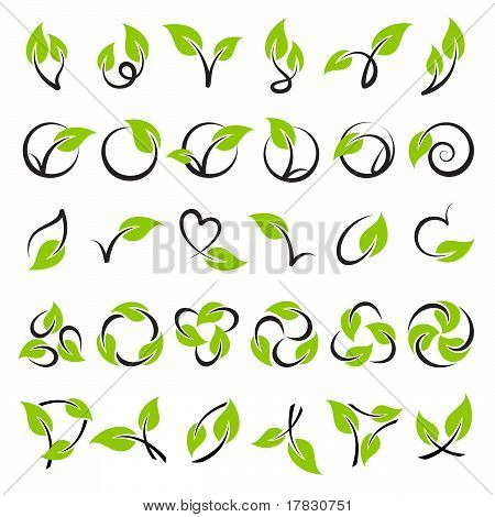 Leaves. Vector Template Set. Elements For Design. Icon Set.