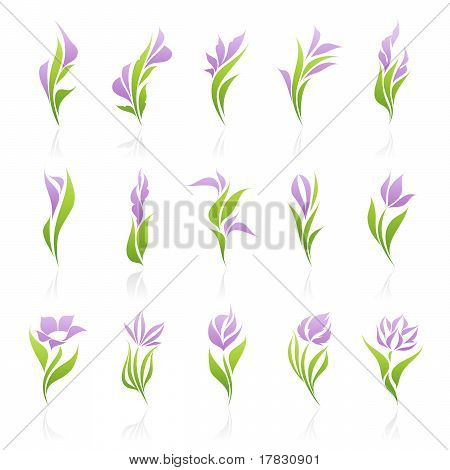Beautiful purple flowers. Vector Template Set. Elements For Design. Icon Set.