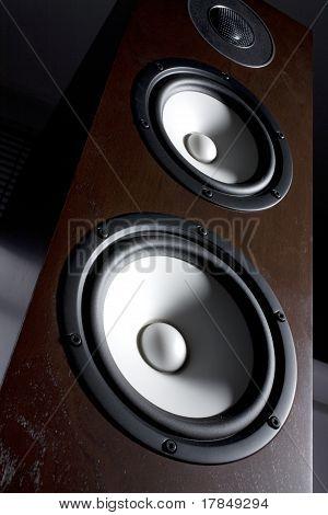 Speaker / Loudspeaker