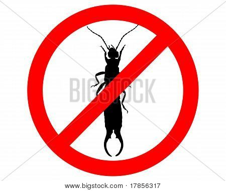 Earwig Prohibited