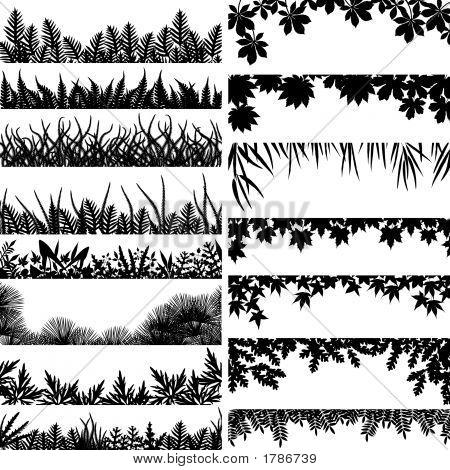 Pflanze-Grenzen