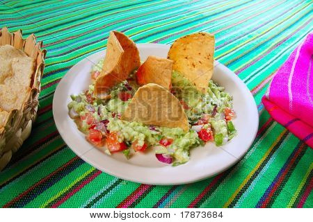 guacamole mexican salad with nachos totopos food of Mexico