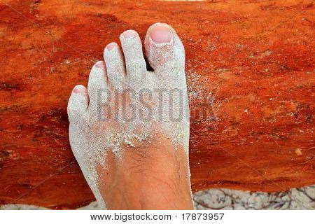 Caribbean white sand in tourist feet detail over tropical red wood trunk