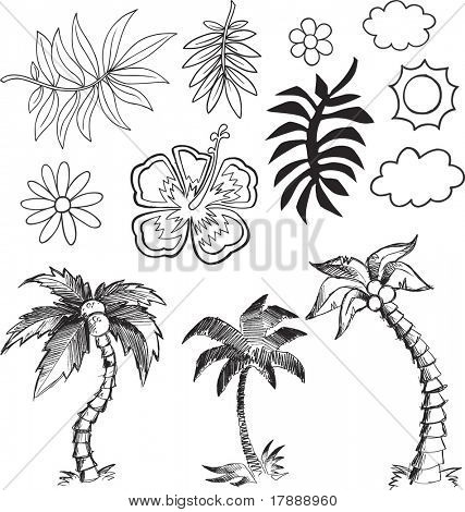 Tropical Hawaiian Vector Illustration