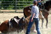 foto of teen pony tail  - horse trying to roll with rider on - JPG