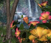 Hibiscus Flowers & Waterfalls