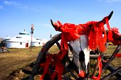 picture of cow skeleton  - Cattle skeleton hangging on a wooden wheel at Inner Mongolia pray for good luck - JPG
