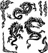 Iconic Dragons & Tribal Borders Vector Illustration