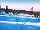 Two Ways For Cross Country Skiing In Winter Mountains. poster