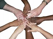 stock photo of huddle  - stacked hands of a diverse team of workers to showcase teamwork and unity isolated on a white background via clipping path - JPG