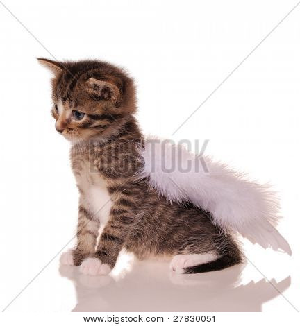 stripy angel [clipping path]