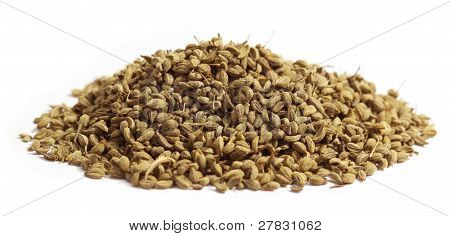 Close up of Herbal ajwain seeds