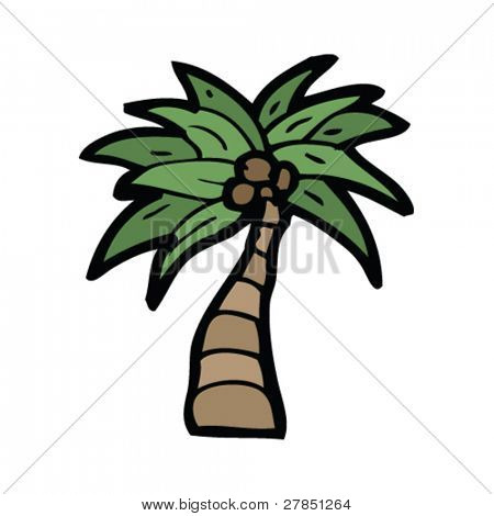 quirky cartoon of coconut tree