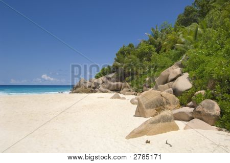 Picturesque Tropical Beach