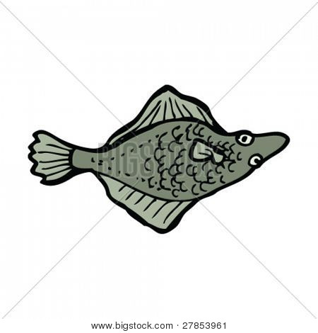 flatfish drawing